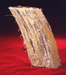 Most Likely To Questions >> Types of Asbestos - Chrysotile Asbestos, Tremolite Asbestos